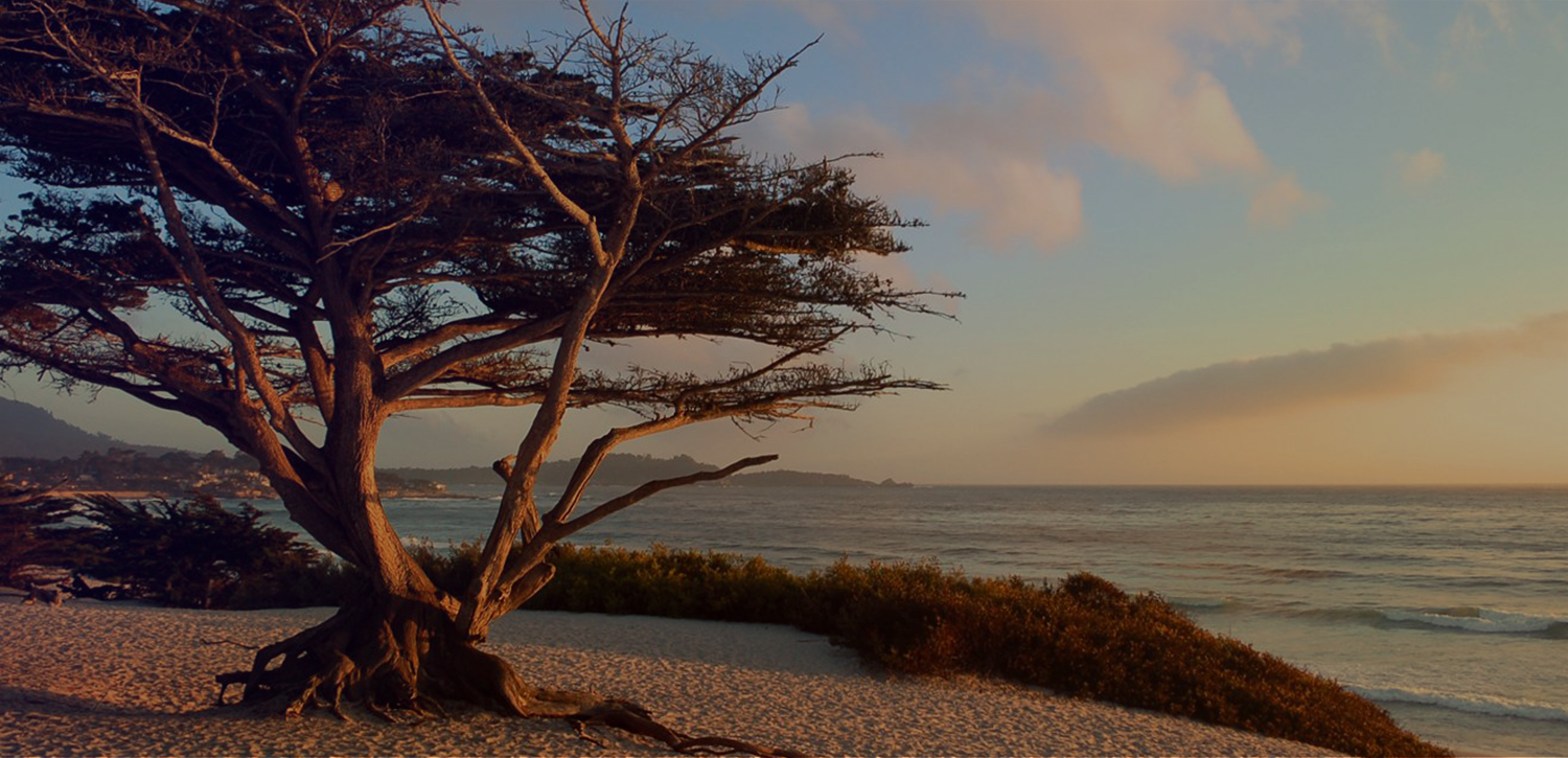 STARGAZER INN & SUITES IS JUST MINUTES FROM CARMEL-BY-THE-SEA